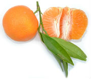 Tangerines Klementina from Greece
